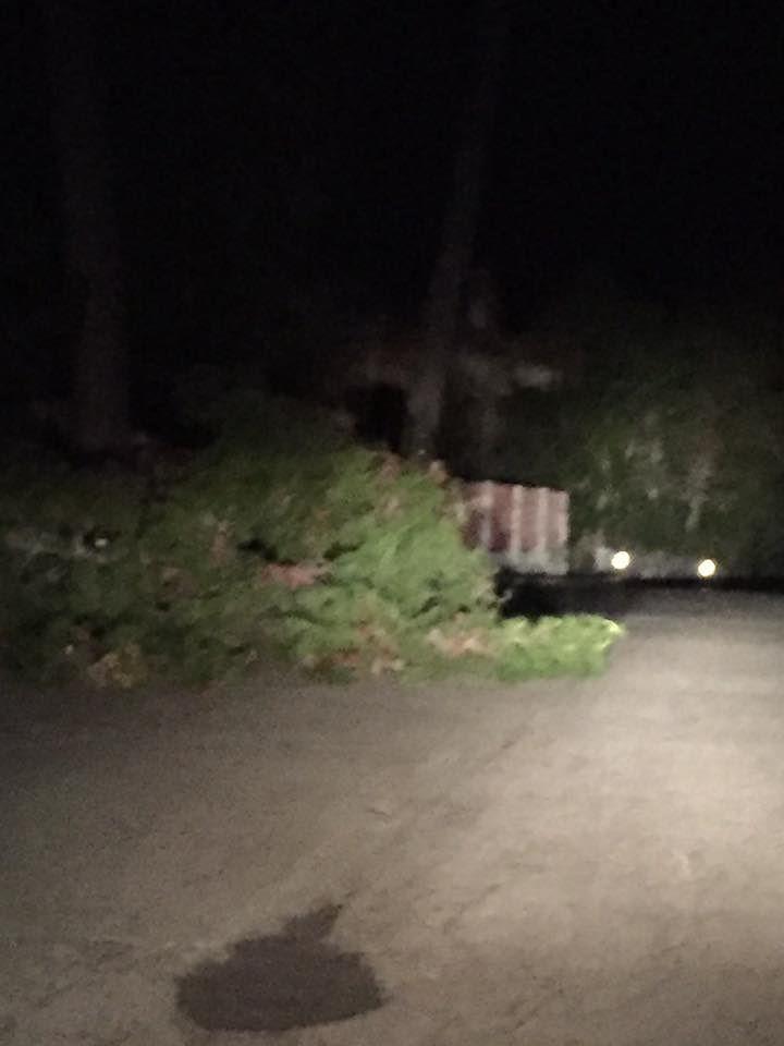 Emergenza vento: gravi black out a Pianella