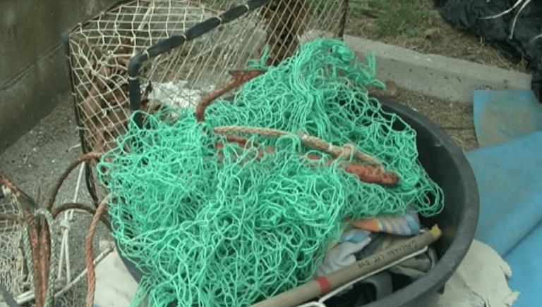 Pescara, 1 chilometro di reti di frodo nel porto: sequestrati 70 chili di cefali
