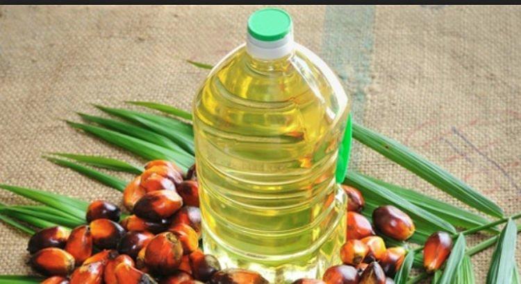 Olio di palma: Efsa aggiorna la dose tollerabile su un contaminante