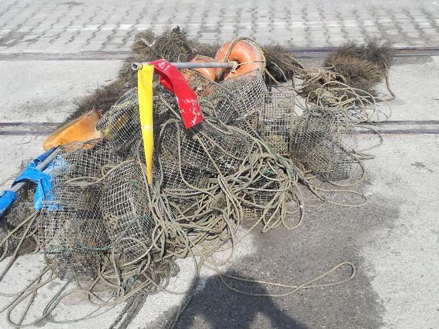 Pesca di frodo sotto costa: sanzioni e sequestri della Guardia Costiera di Ortona