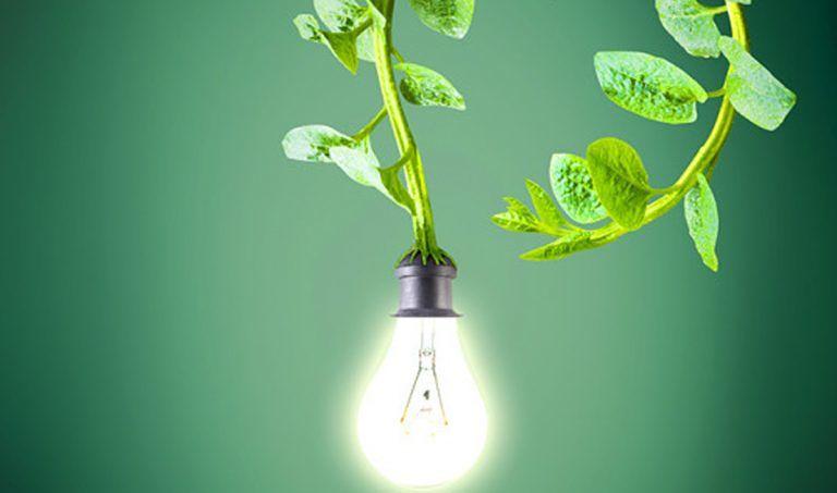 """Teramo, workshop su rifiuti, energia e acqua all'Istituto agrario """"Rozzi"""""""