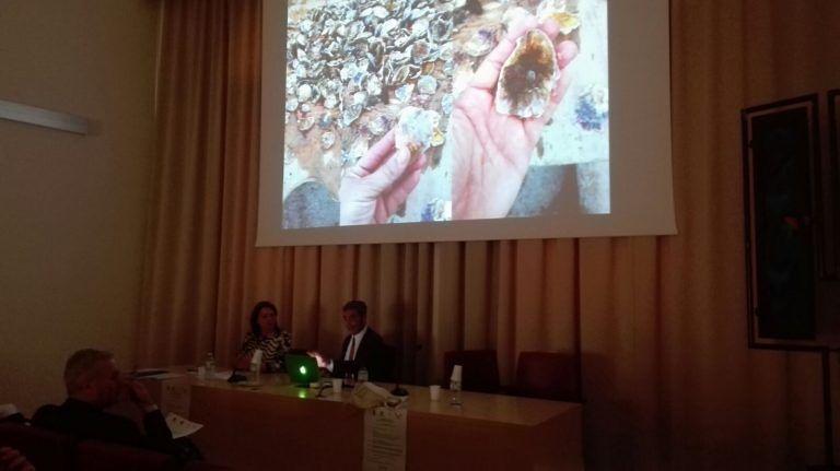 Giulianova, il Flag Costa Blu punta ad incentivare l'allevamento di ostriche piatte (FOTO)