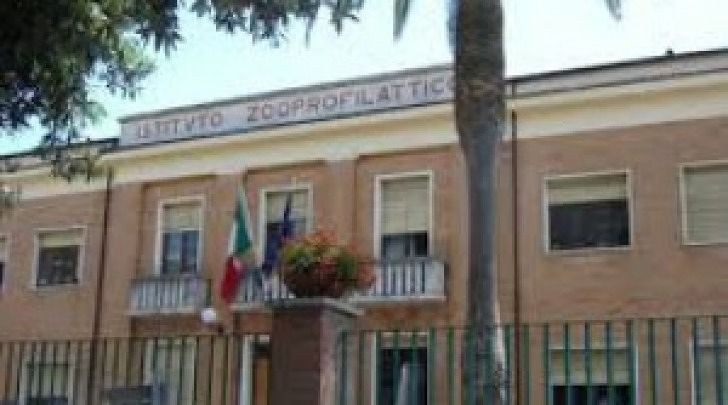 Nomina illegittima all'Istituto zooprofilattico: scatta l'interrogazione in consiglio regionale