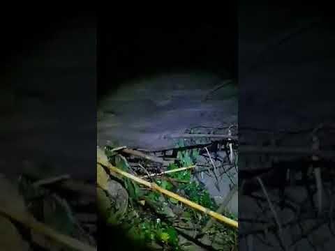 Cellino Attanasio, frane e case allagate a Monteverde Basso VIDEO