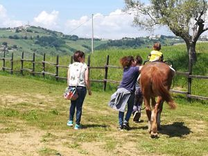 Nido Sirena: gita fuori porta nella fattoria etodidattica equamente| Tortoreto