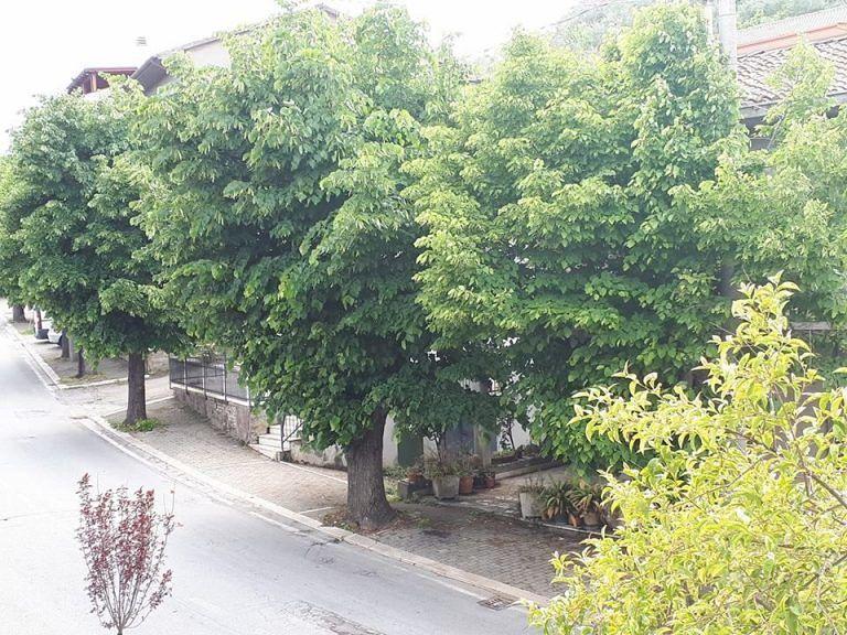 Loreto Aprutino, prosegue la riqualificazione del verde urbano