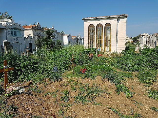 Vasto, 'Giovani In Movimento' denuncia il degrado al Cimitero