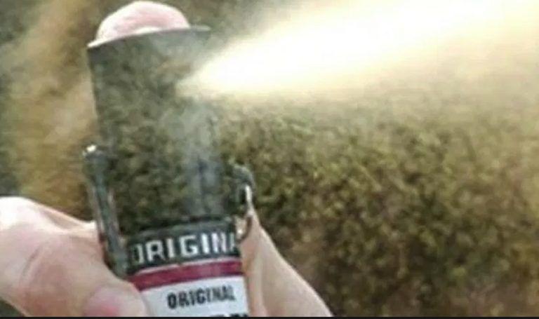 Spray urticante a scuola, 23 intossicati