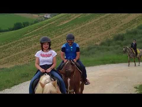 Ale dei cavalli: fantastiche passeggiate a cavallo e corsi di equitazione per tutti| Mosciano S.Angelo