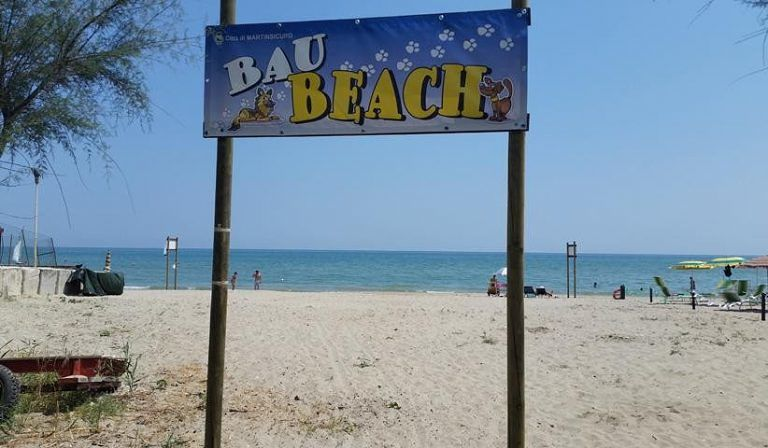 Martinsicuro, cani in spiaggia: nelle due bau beach potranno fare il bagno