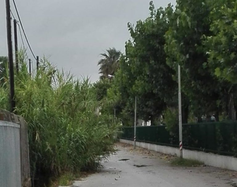 """Cologna Spiaggia, la rabbia dei residenti: """"Dimenticati dai nostri amministratori"""""""