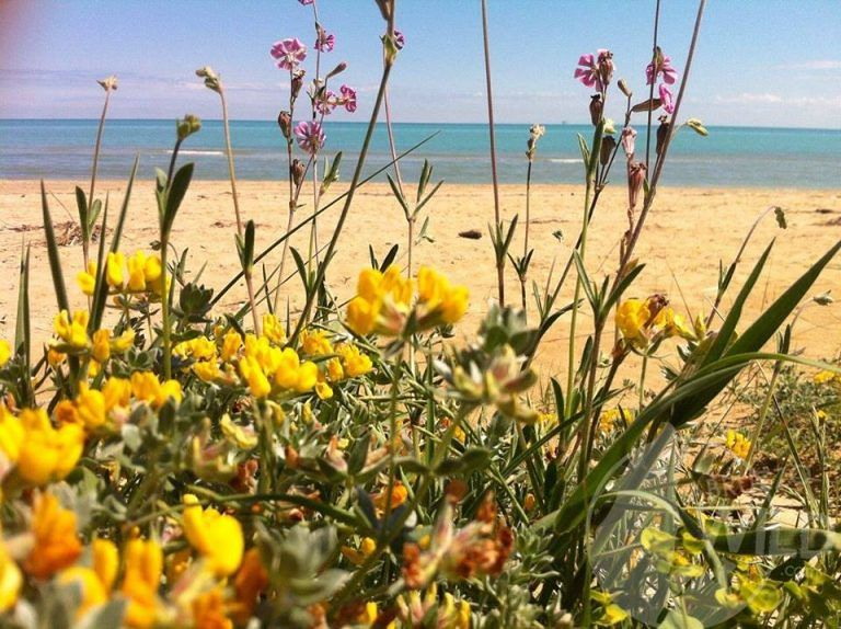 Con Abruzzo Wild dalla montagna al mare   Sabato 21 luglio