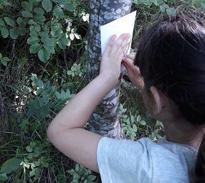 """Isola del Gran Sasso, concluso il progetto scolastico """"A spasso nel parco"""""""