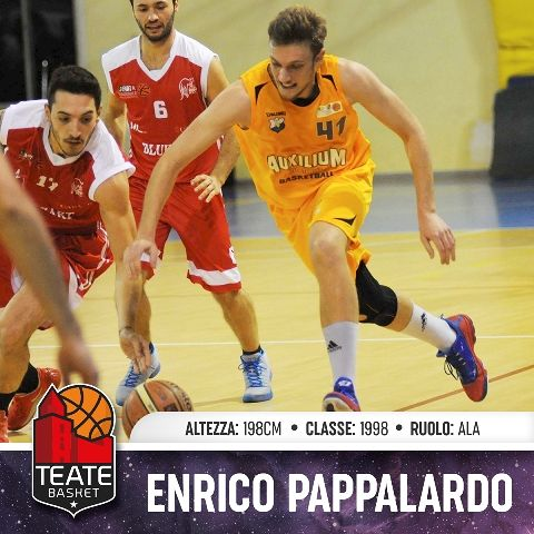 Teate Basket Chieti, ingaggiata l'ala Enrico Pappalardo