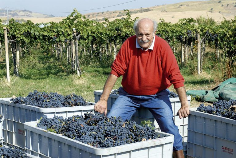 Tocco da Casauria perde il patron dei vini: addio a Lorenzo Filomusi Guelfi