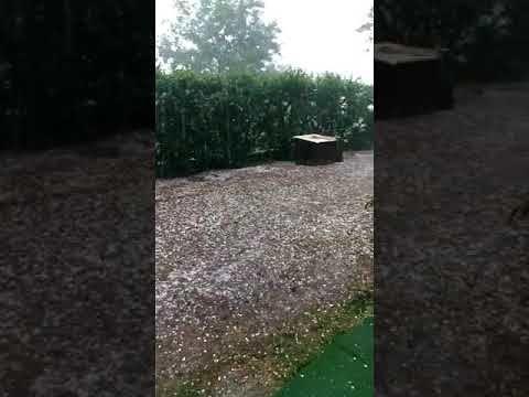 Maltempo nel Teramano: allagamenti e alberi caduti a Campli, Civitella e Teramo FOTO/VIDEO