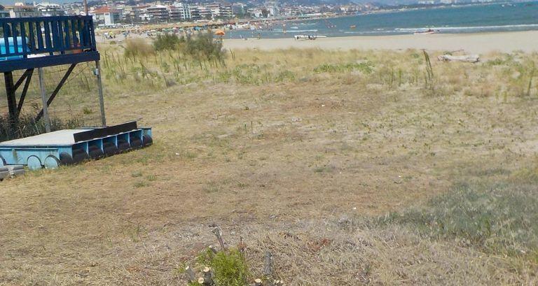 Pescara, la denuncia del Wwf: manomesse le dune della Madonnina