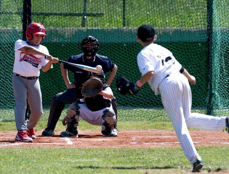 Teramo Baseball, campionato italiano: l'avventura si ferma ai sedicesimi di finale