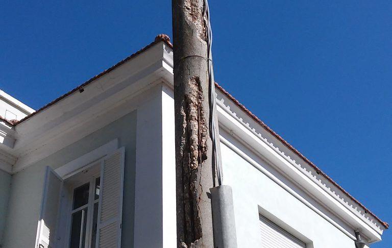 Pescara, pali della luce pericolosi in via Scarfoglio FOTO