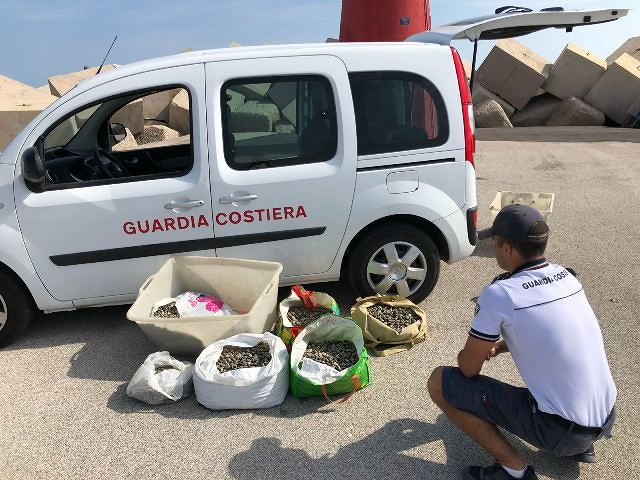 Capitaneria di Porto di Ortona: sequestrati oltre 120 kg di vongole destinate al mercato in nero