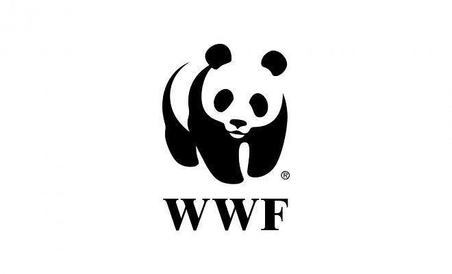 Pescara, piano della Riserva dannunziana: il Wwf dice no alla stesura del Comune