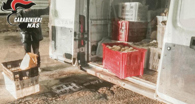 Pescara, controlli del Nas sulla produzione e distribuzione di pane: distrutti otto quintali di prodotto VIDEO