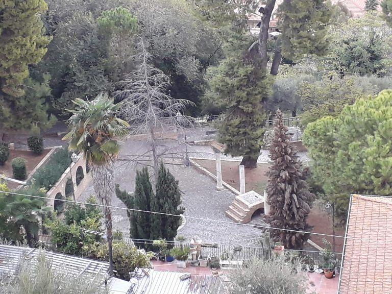 Giulianova, alberi secchi e pericolanti sulla Salita Montegrappa