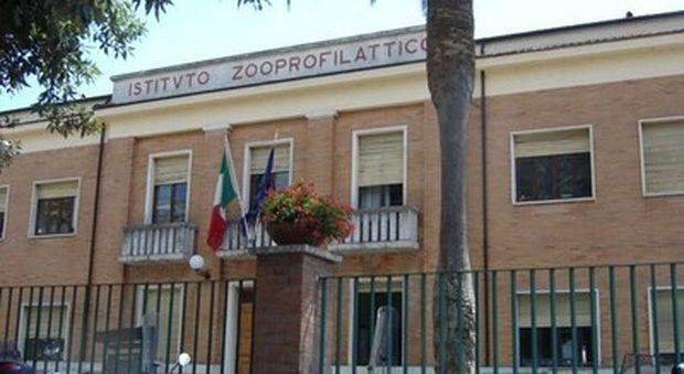 Nomina Di Giacinto all'Istituto Zooprofilattico: Di Giulio ricorre al Tar