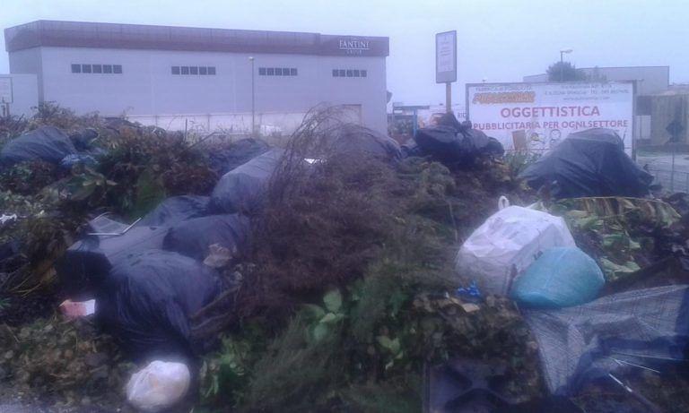 Roseto, più controlli e appostamenti contro l'abbandono di rifiuti a Voltarrosto