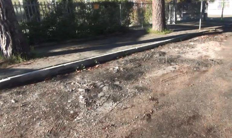 """Giulianova, """"Ruetta Scarafoni"""" devastata dalle radici dei pini"""