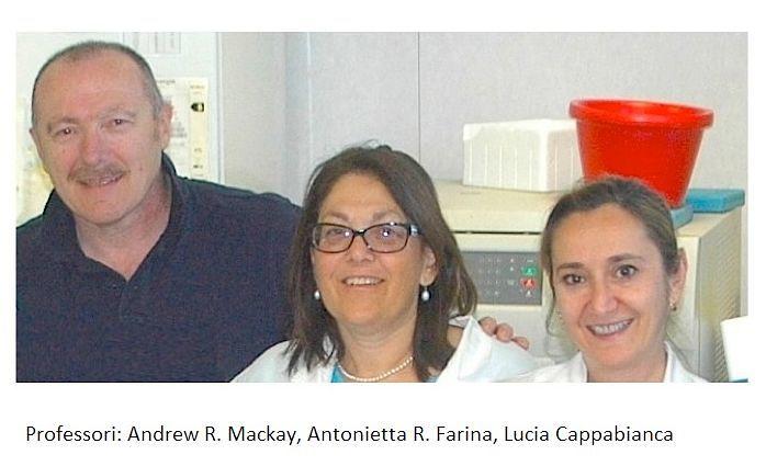L'Aquila, nuovo farmaco anti-tumorale grazie a scoperta dei professori di Scienze Cliniche Applicate e Biotecnologiche