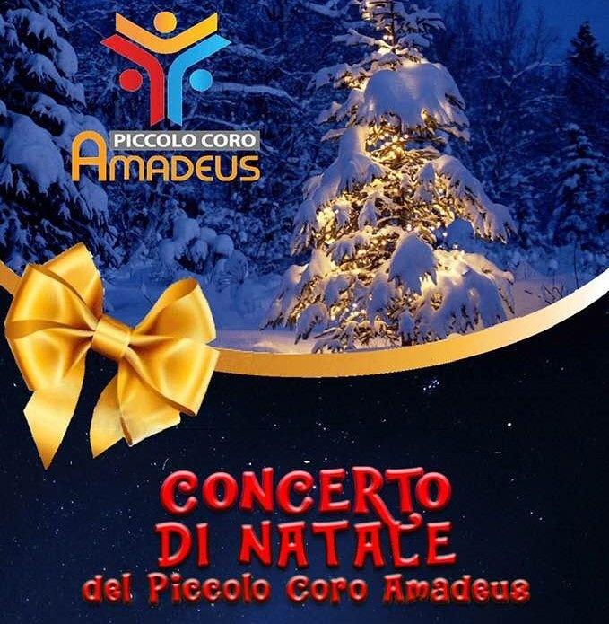 Natale in piazza a Villa Rosa: il programma