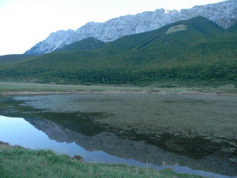 WWF Abruzzo, il bilancio di un anno di attività