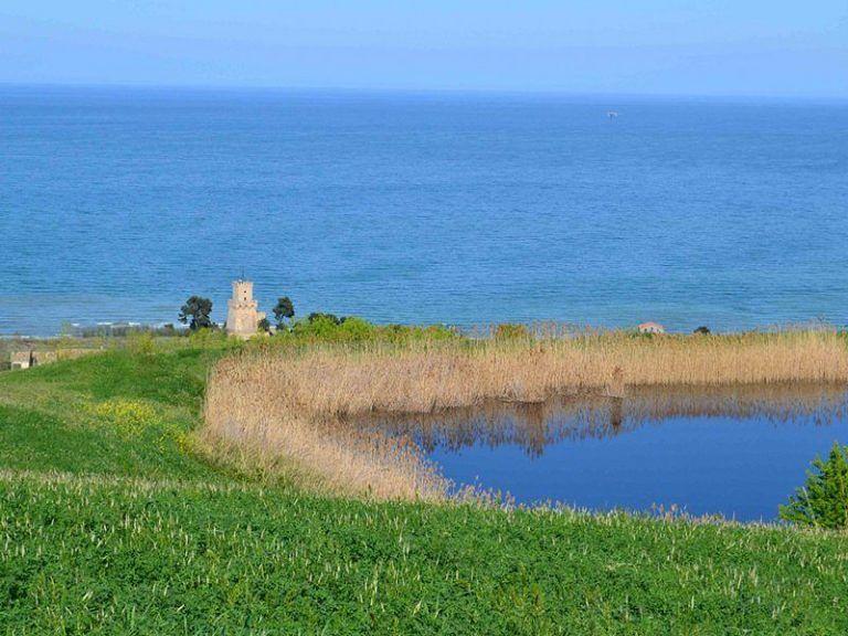 Giornata mondiale delle zone umide: appuntamenti a Pineto e al lago di Serranella
