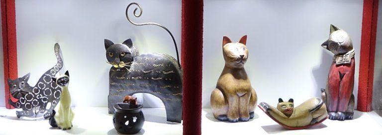 Teramo, per la festa del gatto riapre il museo