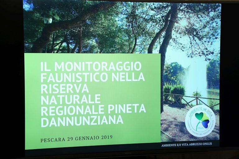 Pescara, flora e fauna della Riserva dannunziana: tutte le specie presenti