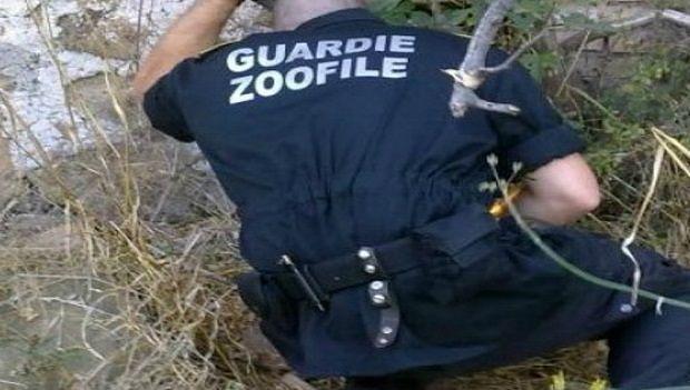 Abruzzo, guardie zoofile: formati 24 nuovi volontari