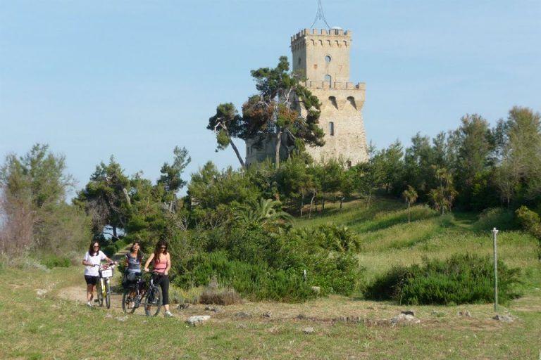 AMP Torre di Cerrano: pubblicato il programma del corso di Alta Scuola di Turismo Ambientale