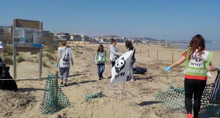 Pescara, Ora della Terra: volontari e sub in azione per ripulire spiaggia e mare