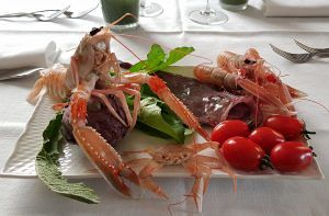 Mercoledì 10 aprile Riapre il Ristorante Lo Squalo Tortoreto Lido Nuova stagione, cucina di qualità in maniera informale ma con tanta passione