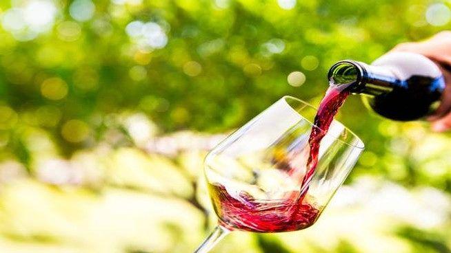 Luci e ombre nel 2019 per il vino abruzzese