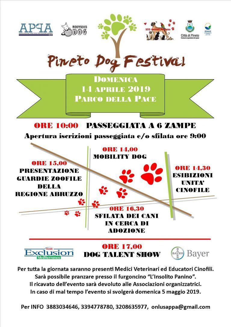 Pineto, torna il Dog Festival: esibizioni e attività per i nostri amici a 4 zampe