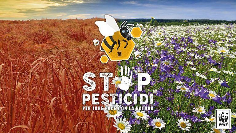 Teramo, flash mob del WWF contro l'uso di pesticidi
