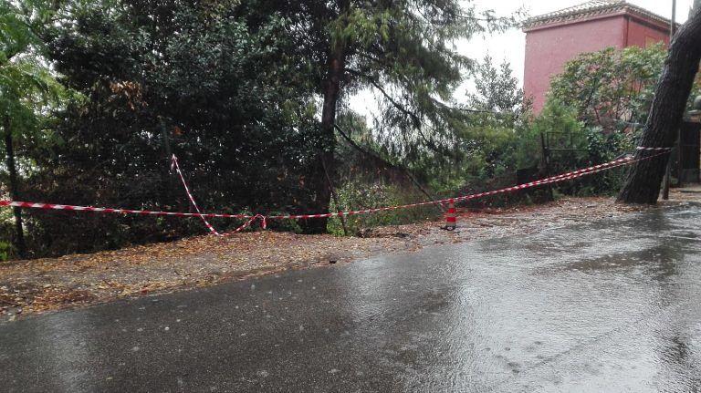 Giulianova, 2milioni e mezzo di euro dalla Regione per via Veneto e via Piave
