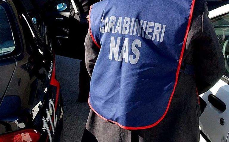 Controlli in forni e pasticcerie abruzzesi, sanzioni dei carabinieri del Nas