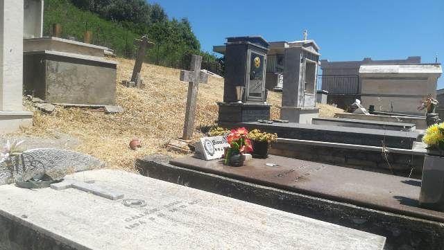 Erbacce al cimitero di San Giovanni alta, Ferraioli: 'Le bufale social di Lega e Fratelli d'Italia'