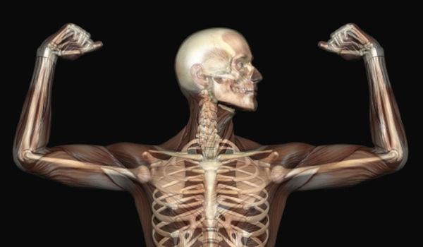 Domani a Teramo, appuntamento con la salute delle ossa