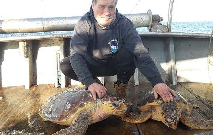 Pescara, tornano in mare dopo le cure: festa grande per due tartarughe
