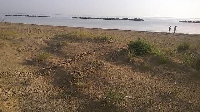 Dune di Ortona, ora arrivano anche i vandali