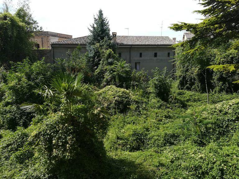 """Atri, la segnalazione sui giardini Sorricchio: """"Selva intrecciata di erbacce"""" FOTO"""